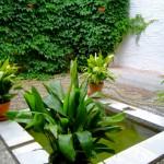 El bañuelo - patio